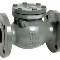 V7800V swing check valve